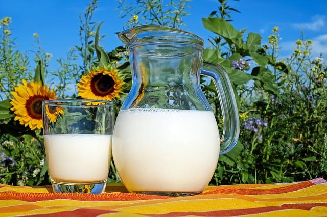 mléko a slunečnice