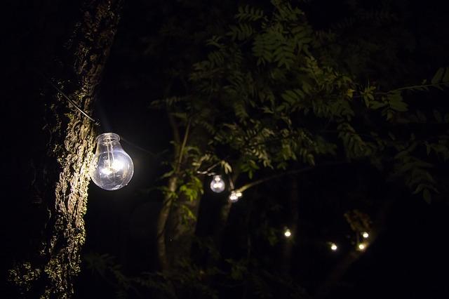 osvětlení na stromech